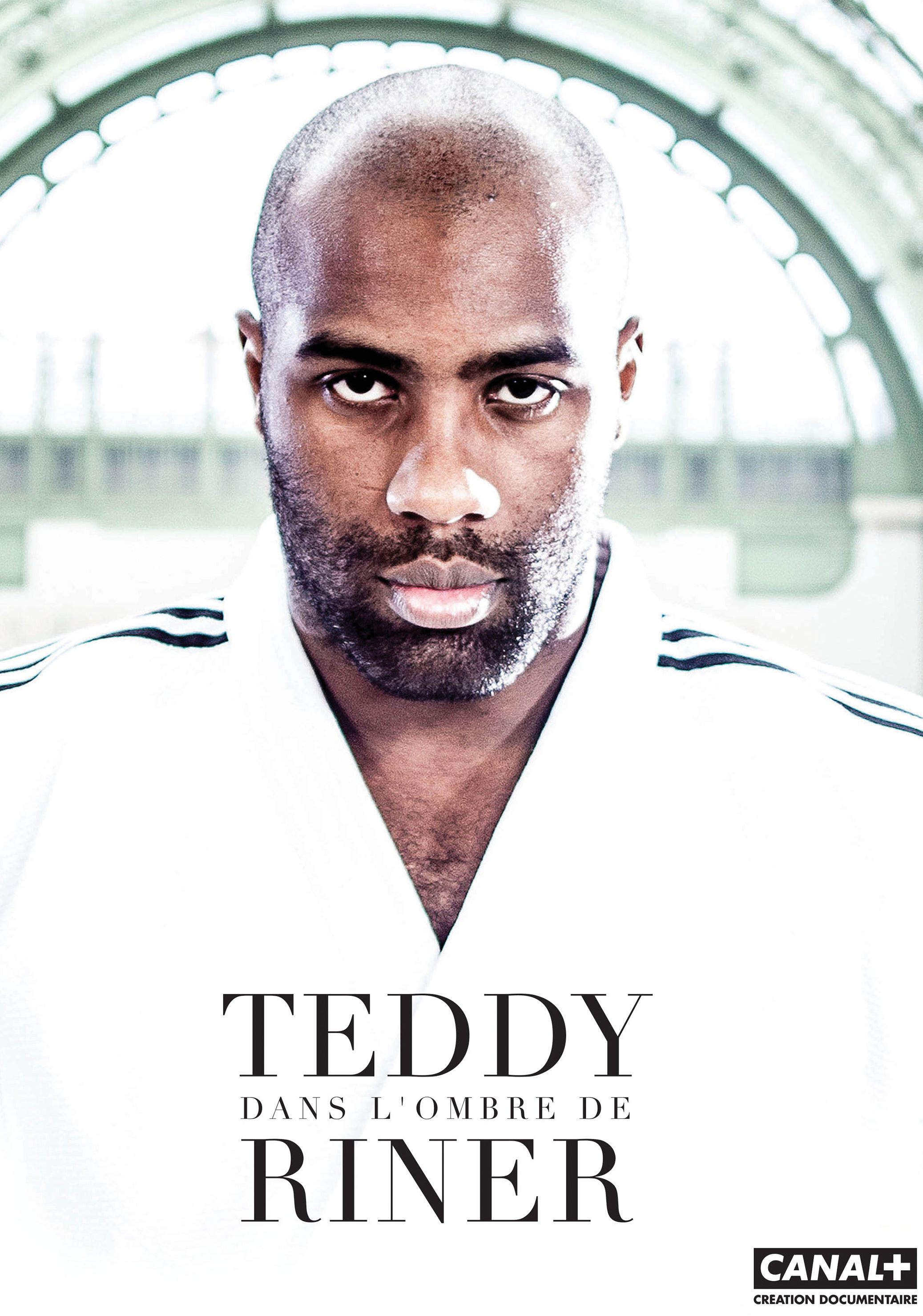 teddy riner sur canal ippon au grand palais rmn grand palais. Black Bedroom Furniture Sets. Home Design Ideas