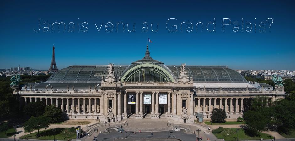 Visite d couverte rmn grand palais - Expo le grand palais ...